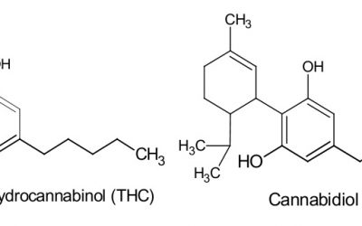 Molecular Structure of CBD and THC