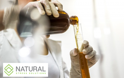 Beginners Guide to CBD Tinctures