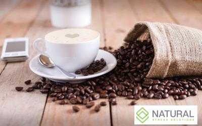 CBD Coffee Craze – Is it Worth the Money?