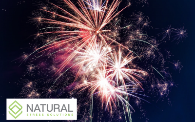 Could Your Pets Benefit From CBD This 4th of July?