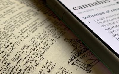 Hemp and Marijuana, What's the difference?